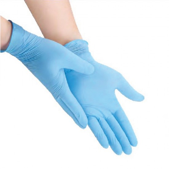 YaniPure Nitrile Examination Gloves (Large)