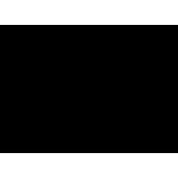 4-(8-Chloro-11-fluoro-6,11-dihydro-5H-benzo[5,6]cyclohepta[1,2-b]pyridin-11-yl)-1-Piperidinecarboxylic Acid Ethyl Ester