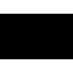 3'-N-Desmethyl-3'-N-tosyl Azithromycin
