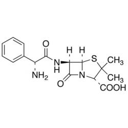 Ampicillin (Anhydrous)